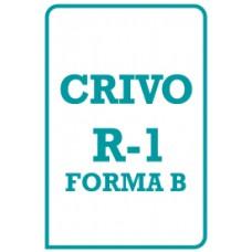 R-1 Foma-B Teste Não Verbal de Inteligência - Crivo de Correção