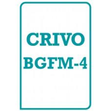BGFM-4 - Bateria Geral de Funções Mentais - Teste de Memória de Reconhecimento - TMR - Crivo de Correção